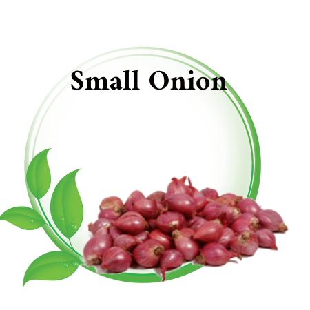 onion in Asian markets Riyadh