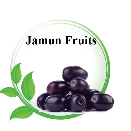 best Jamun fruits in Asian markets Riyadh